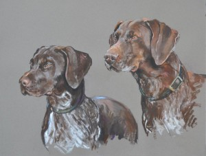 German pointer bitch with pup - pastel on paper