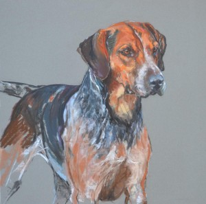 Jed Forest Foxhound -pastel on paper
