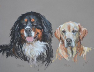 Juno and Jack - pastel on paper